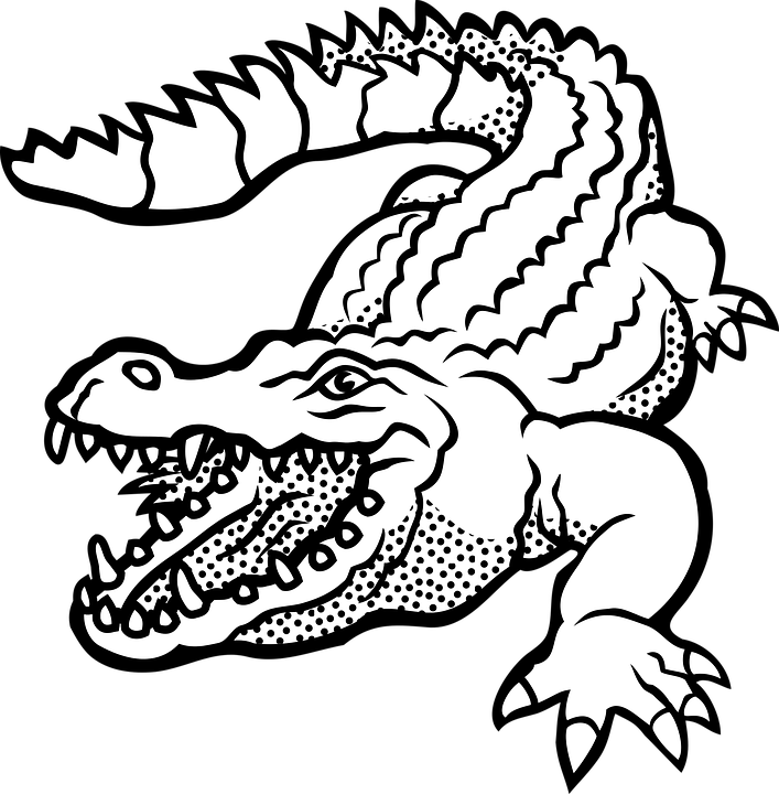 Png transparent animal lizard. Crocodile clipart black and white