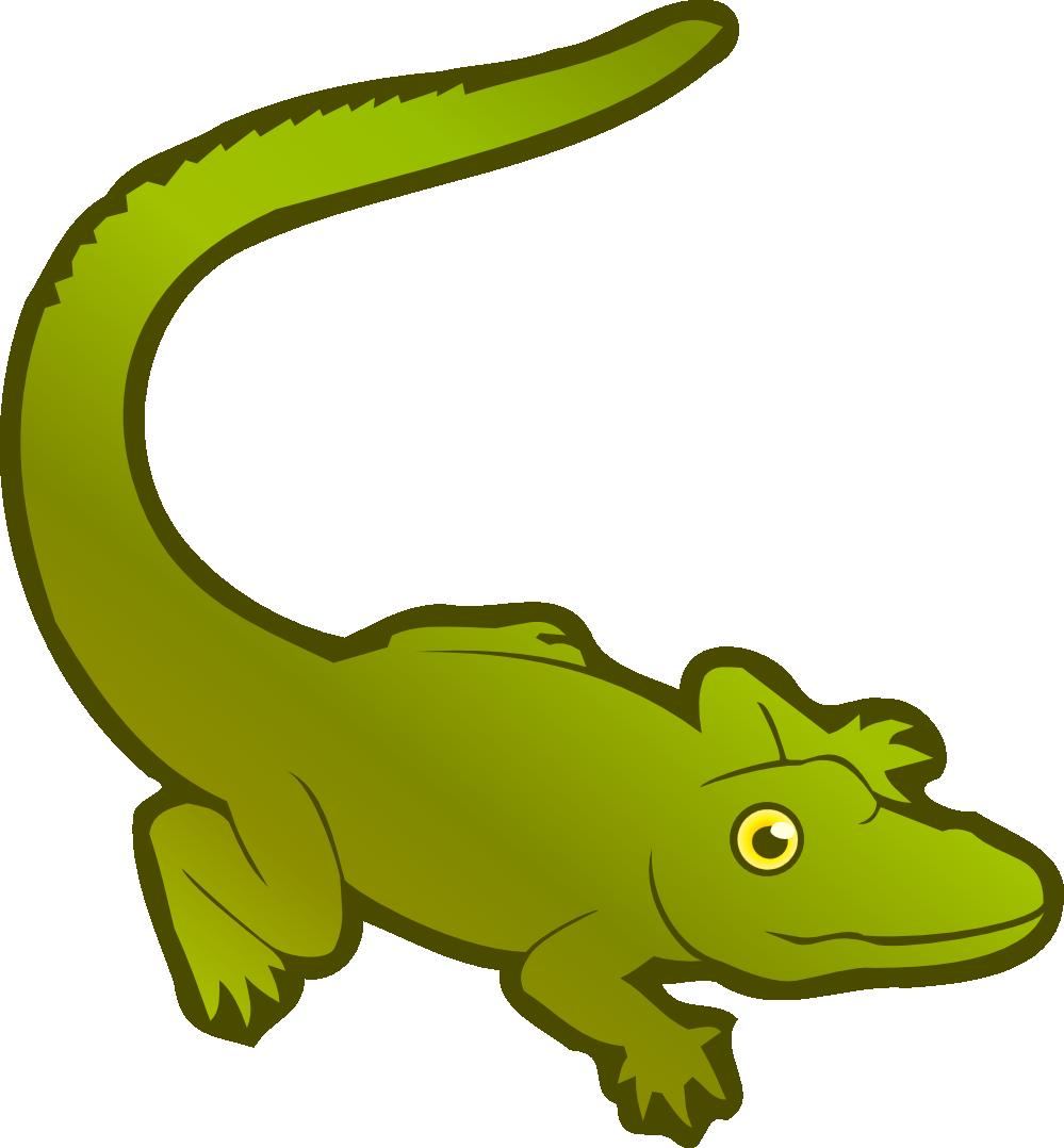 Alligator easy