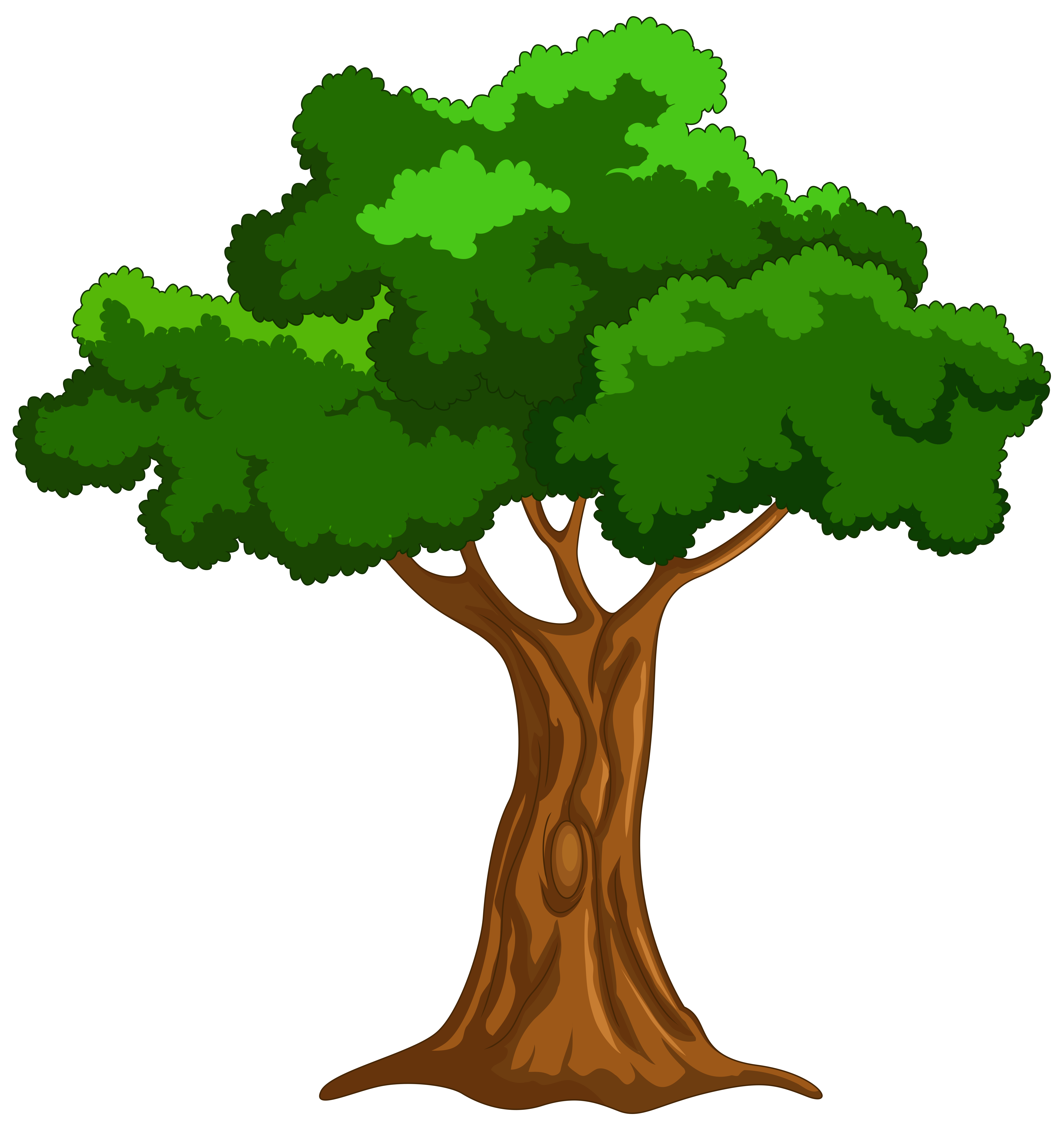 Cartoon tree png clip. Landscape clipart kindergarten student