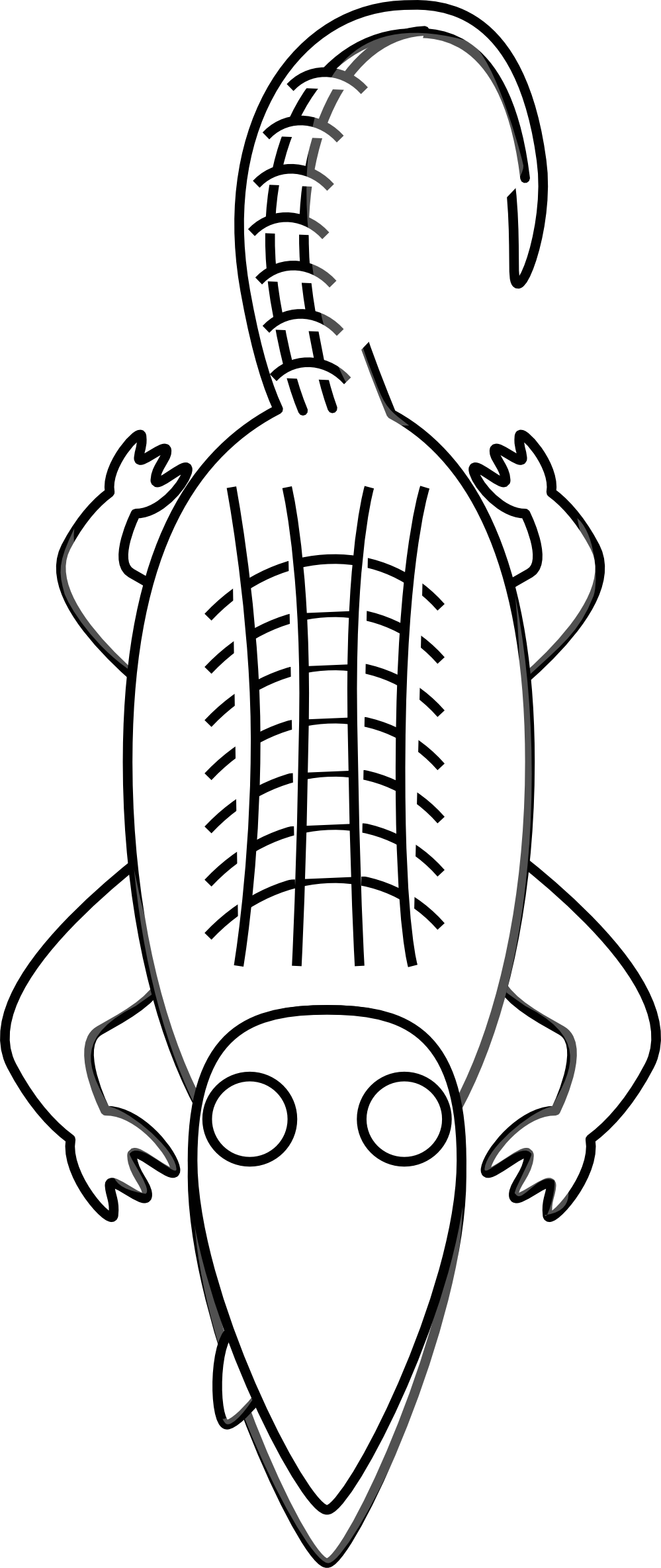 Orange clipart gator. Alligator black and white
