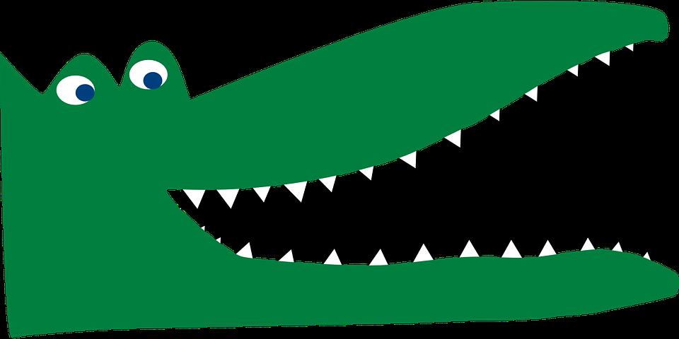 collection of open. Crocodile clipart colour