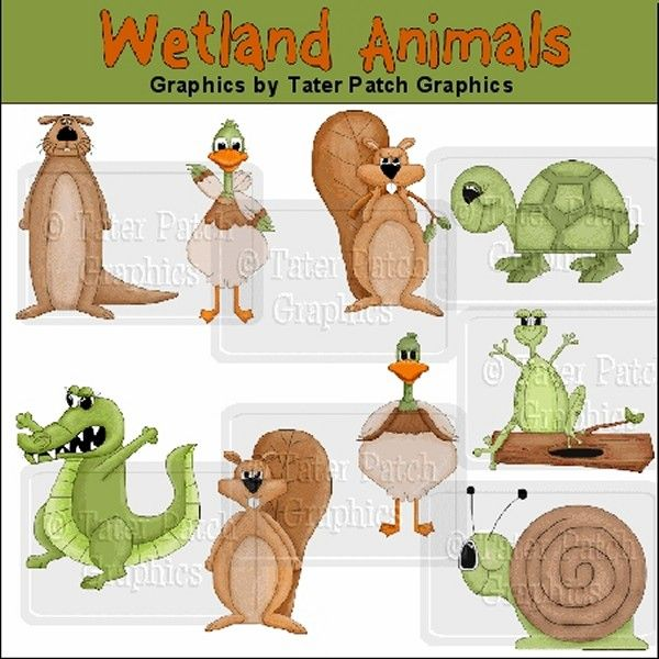 Ducks clipart wetland animal. Animals graphics swamp digital