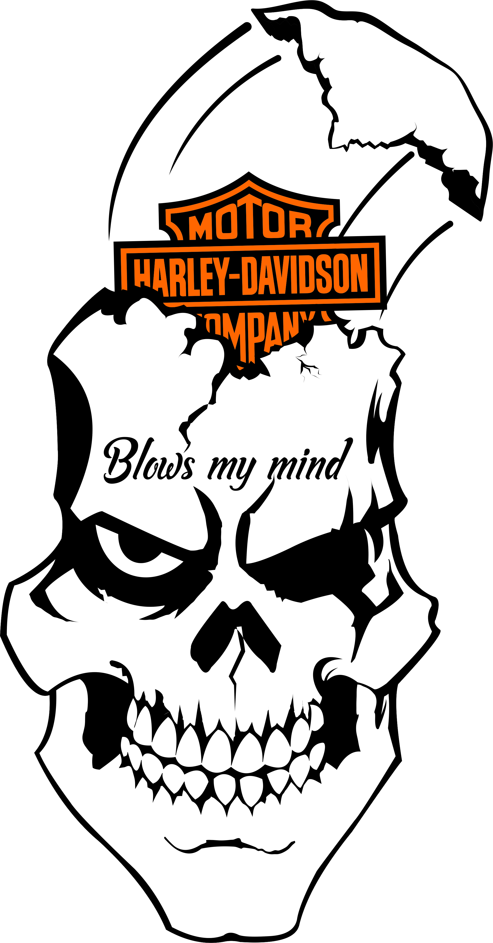 Pin by bruce jackson. Clipart shield skull