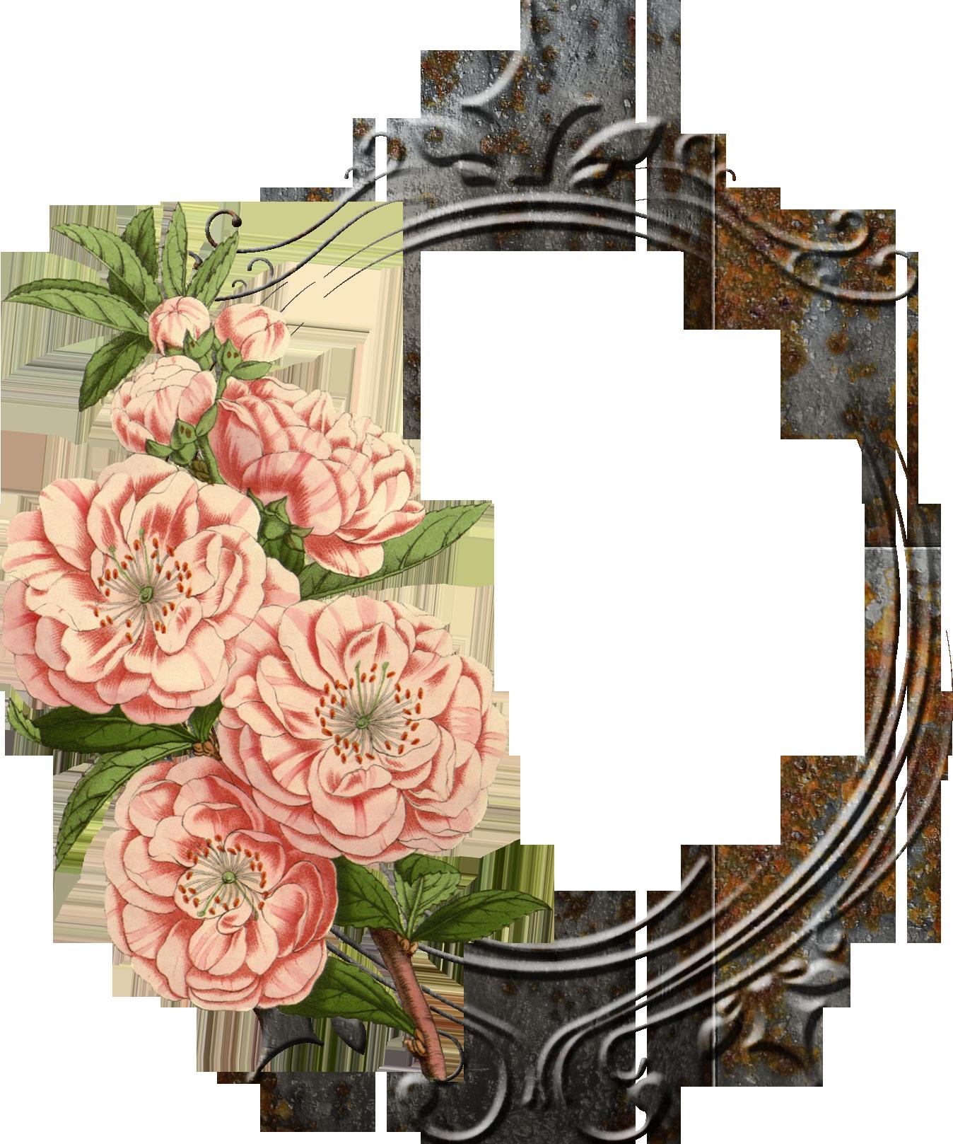 Google frames pinterest. Vintage flower png