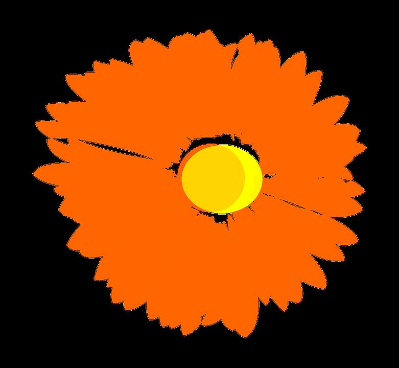 Clipart anchor flower. Orange free download jokingart