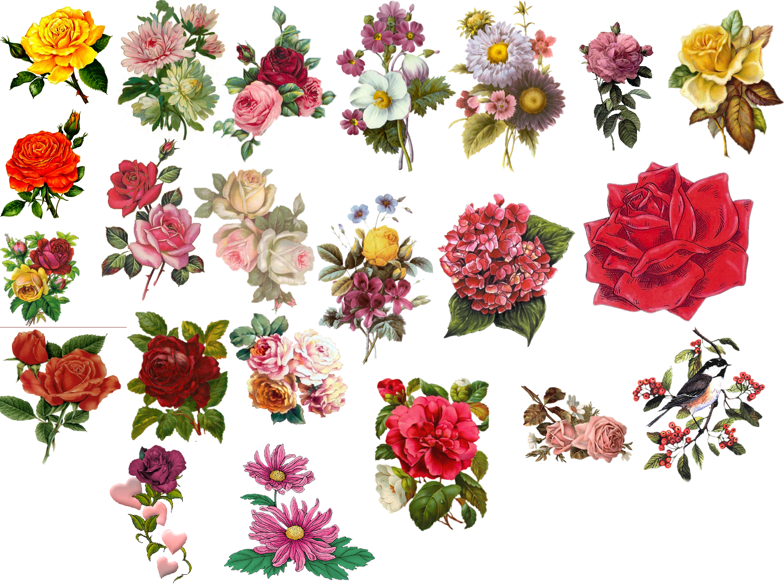 Clipart anchor vintage. Flower pictures beautiful flowers