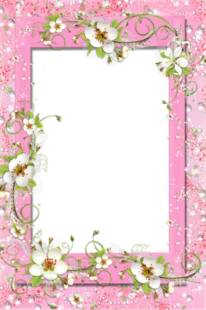 Plants clipart frame. Transparent pink png with