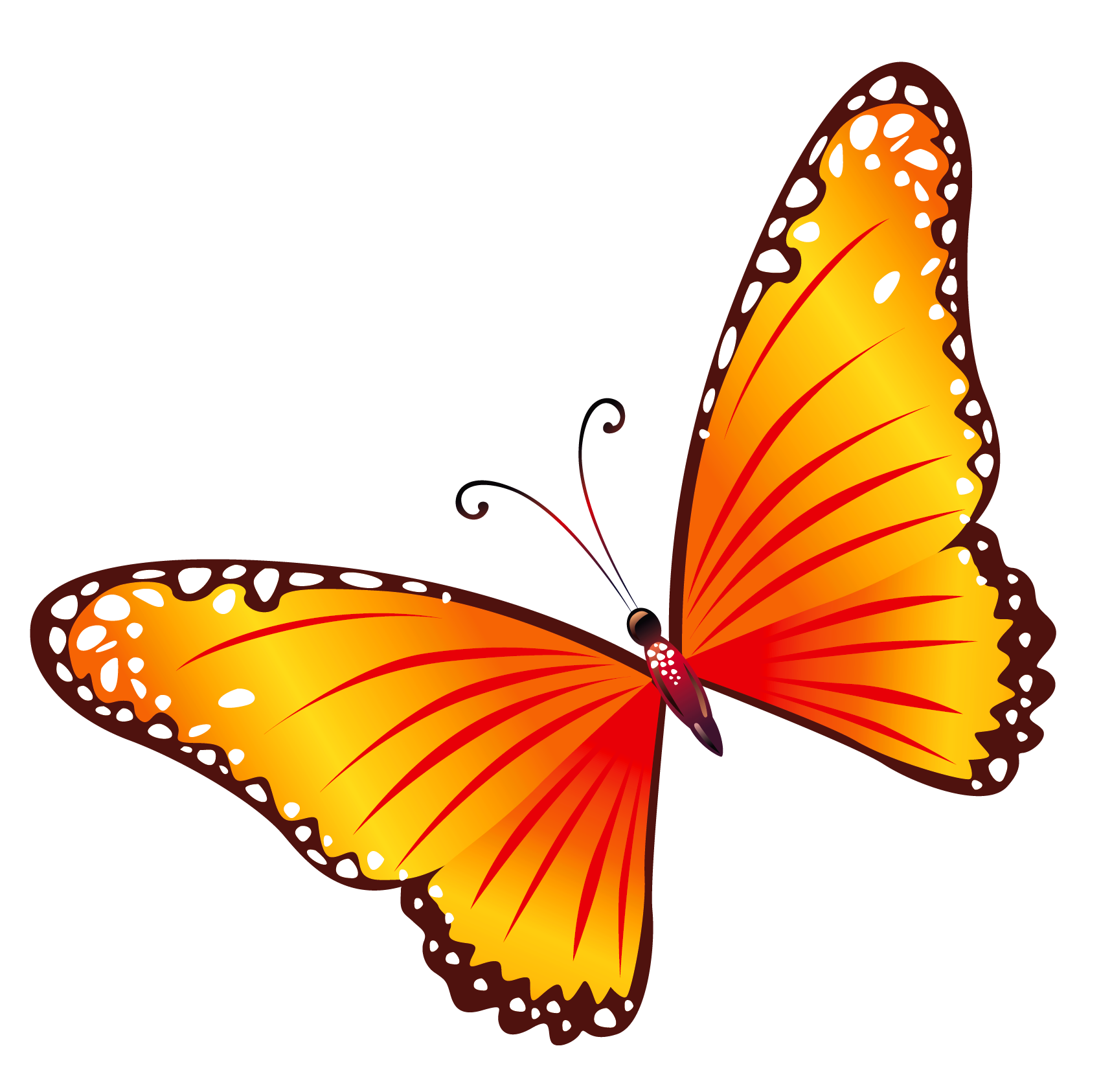Transparent orange png all. Clipart butterfly enchanted