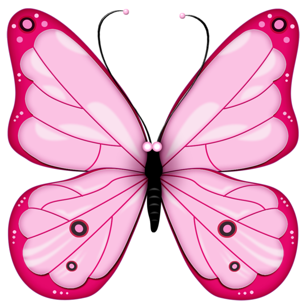 Pink transparent butterfly cliparts. Wing clipart bug