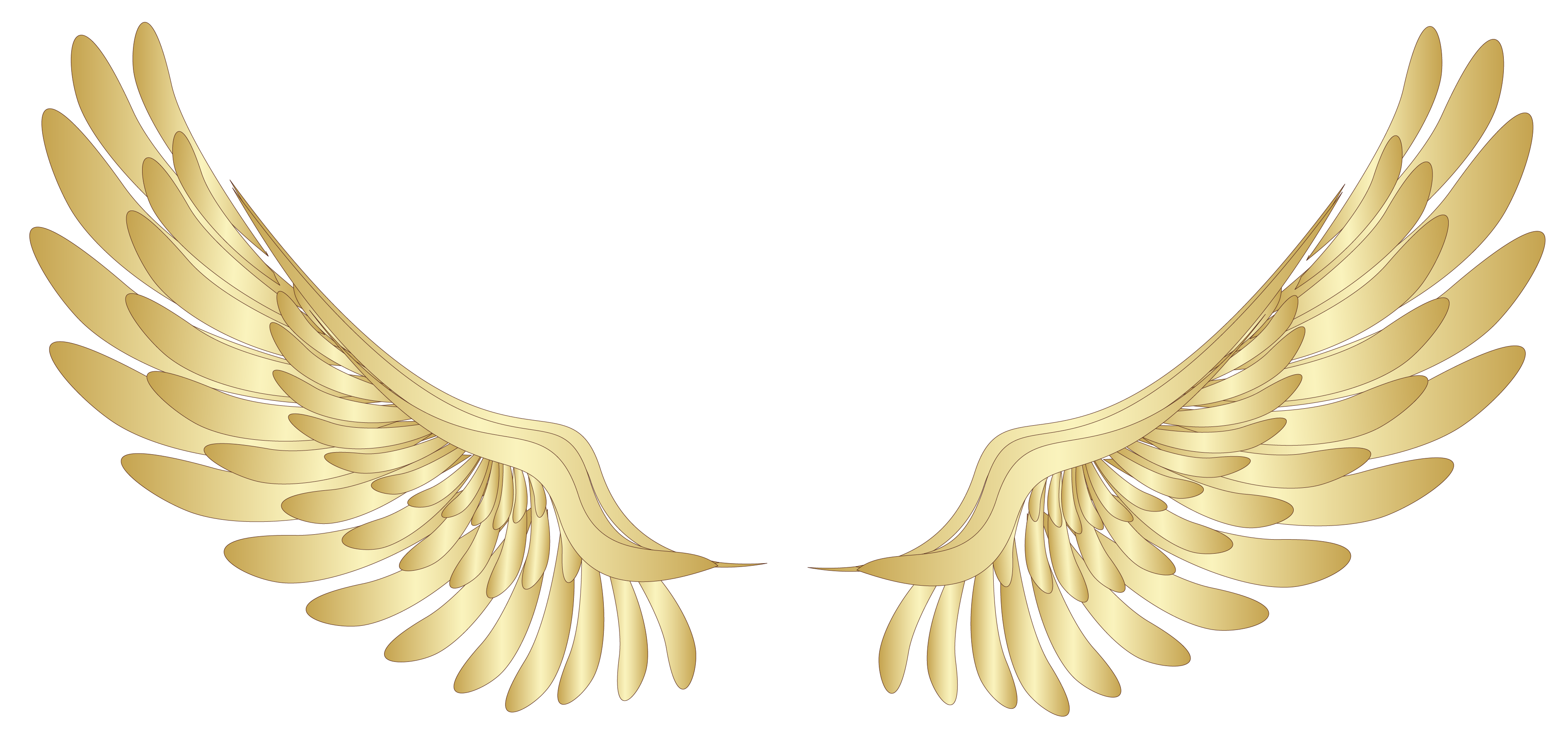 Wing clipart wing hd. Golden wings decor png