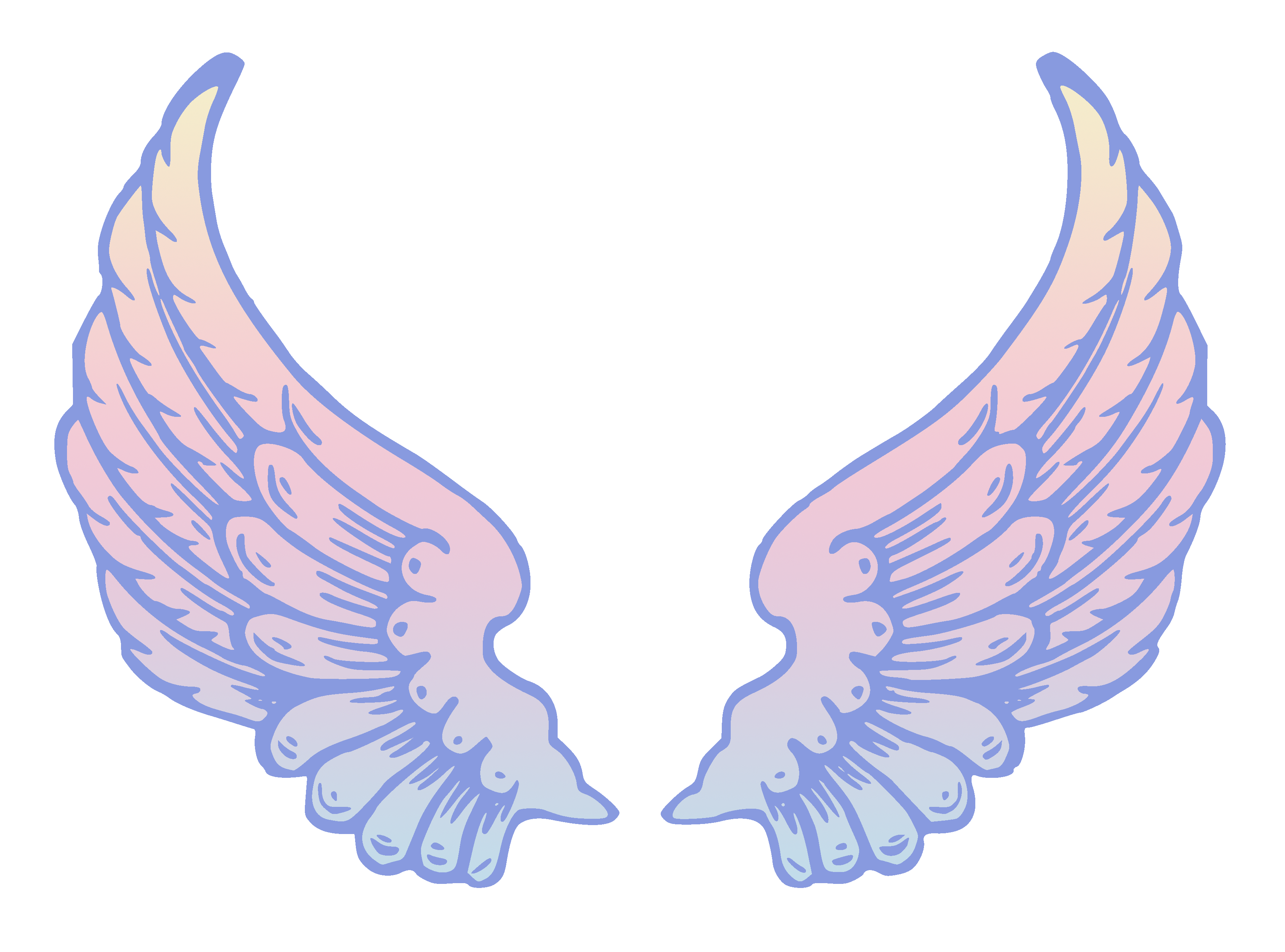Peterm remix public domain. Angel wings vector png