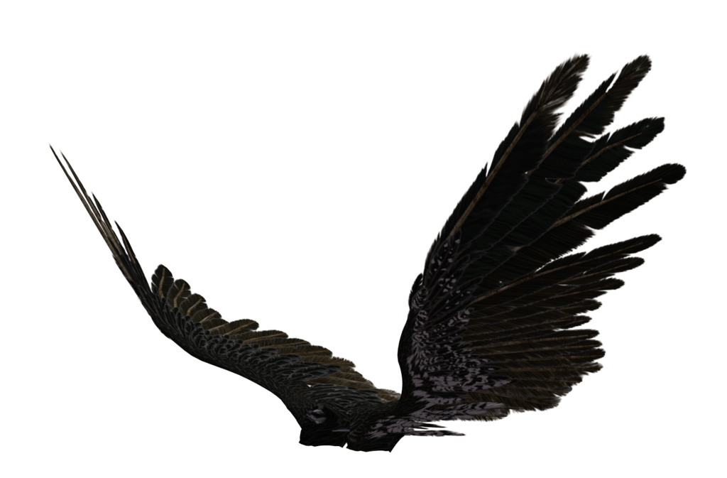 Wing clipart supernatural.  collection of dark