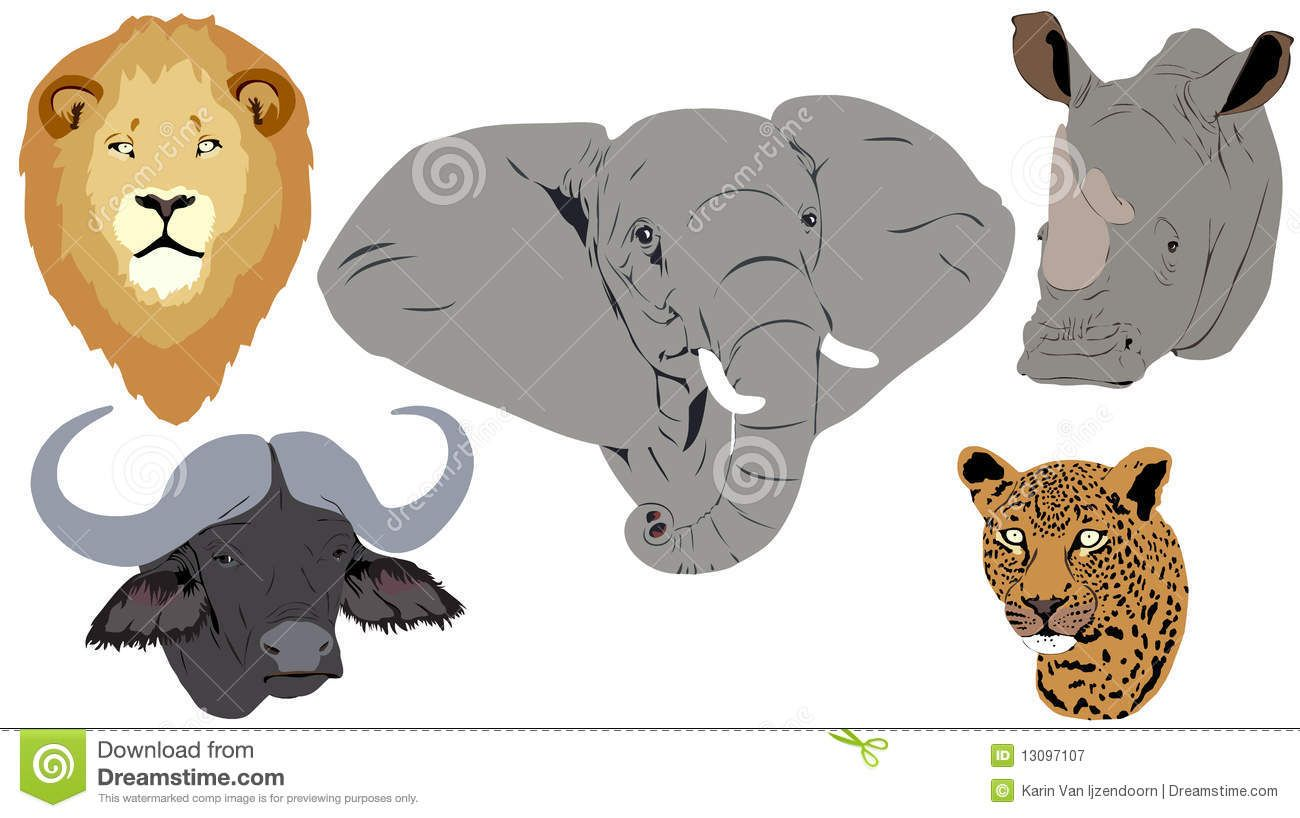 Clipart animals big 5. Image result for cartoon