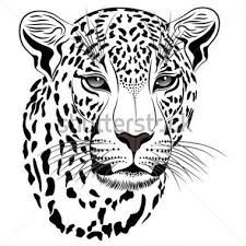 best images in. Clipart animals big 5