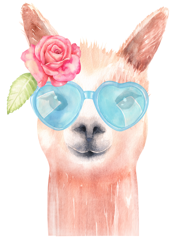 Clipart glasses baby. Llama watercolor graphics alpaca