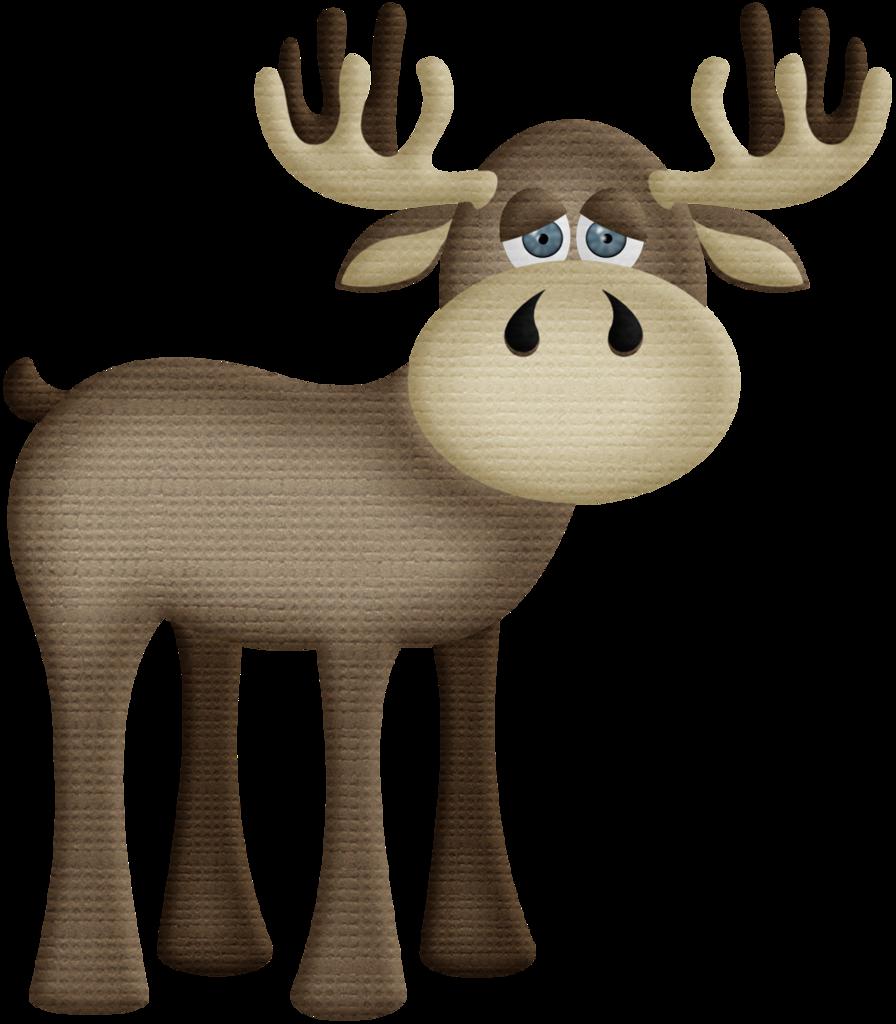Moose clipart woodland bear. Safari zoo animals pinterest