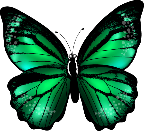clipart butterfly cage