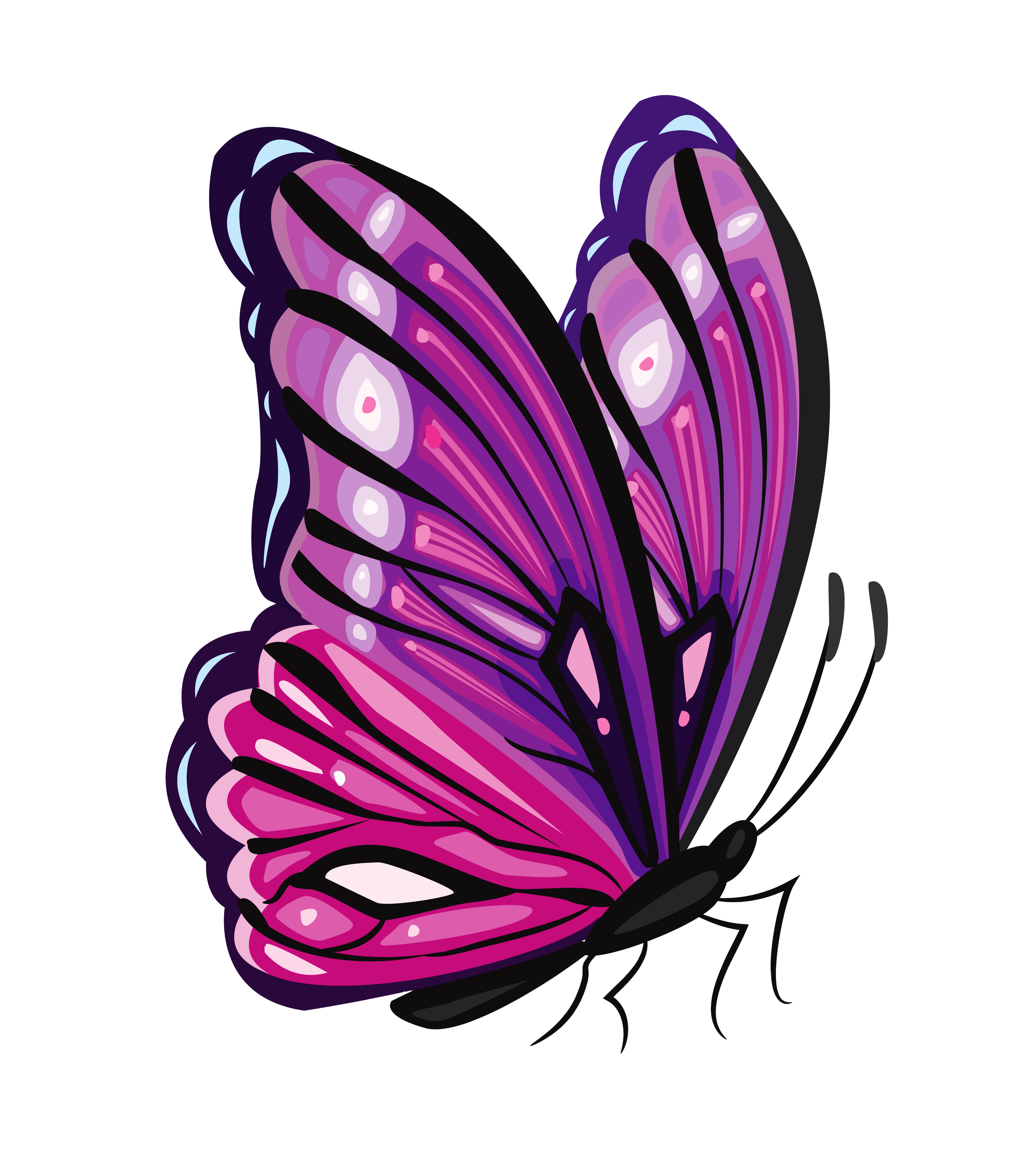 Purple png picture crafts. Galaxy clipart butterfly