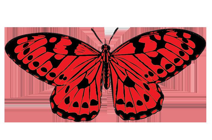Clipart butterfly banner. Butterflies clip art clipartix