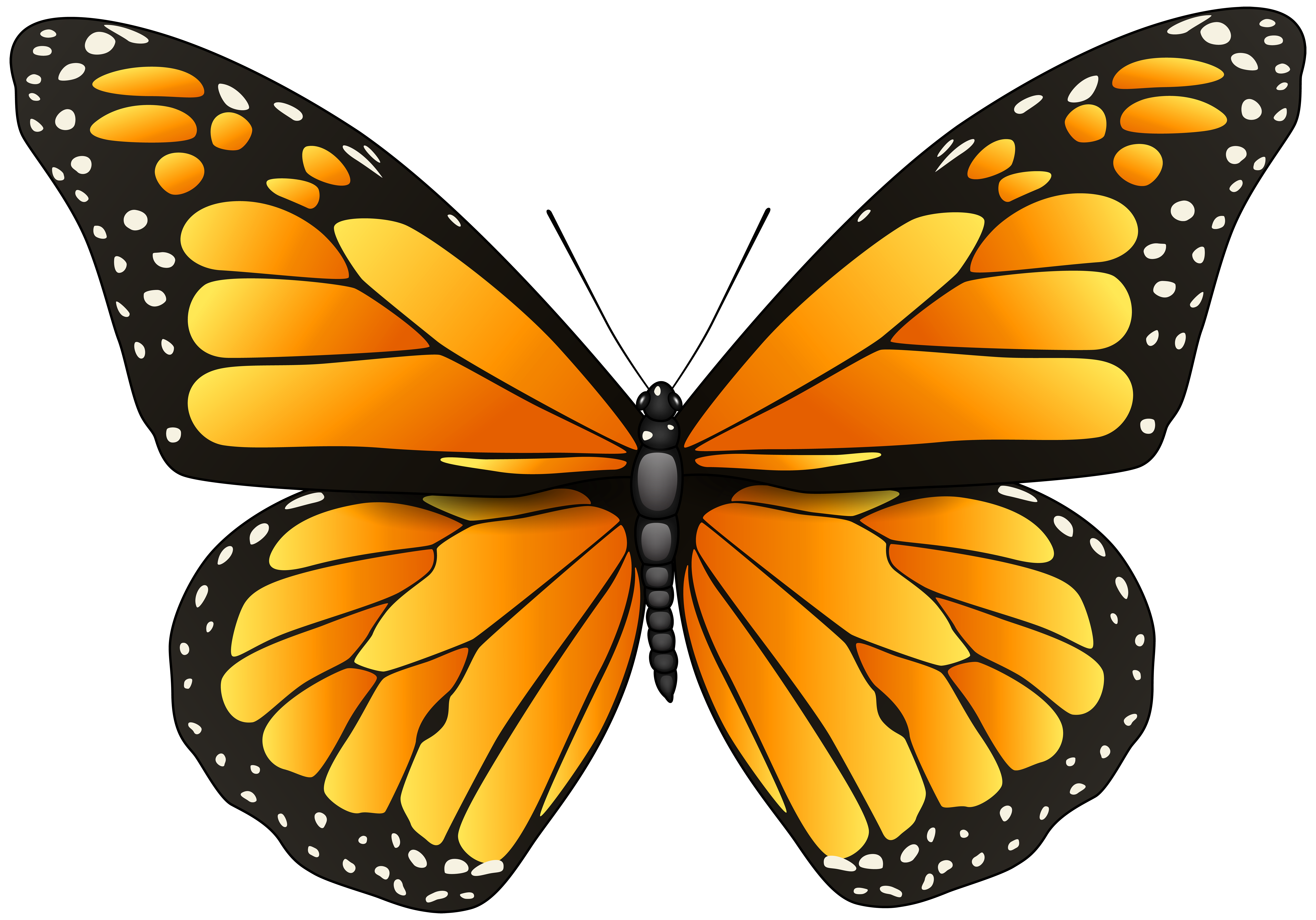 Orange png clip art. Clipart butterfly diamond
