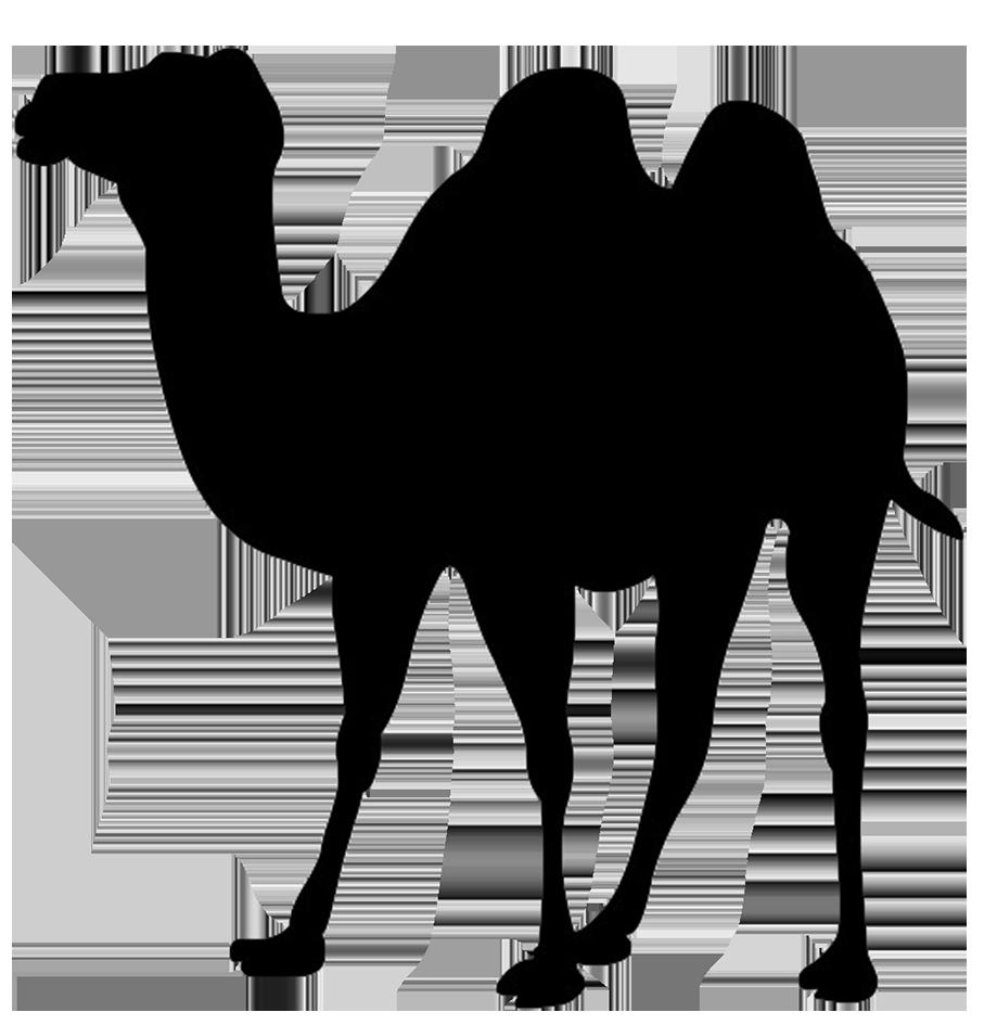 Coyote clipart desert biome. Giraffe silhouette clip art