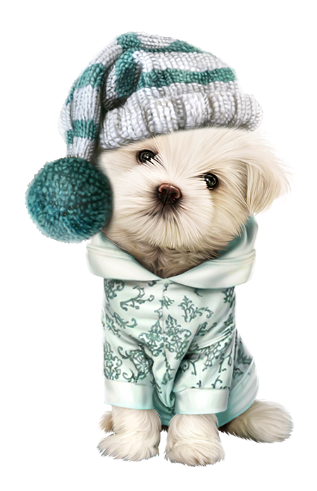 Image du blog zezete. Pet clipart companion