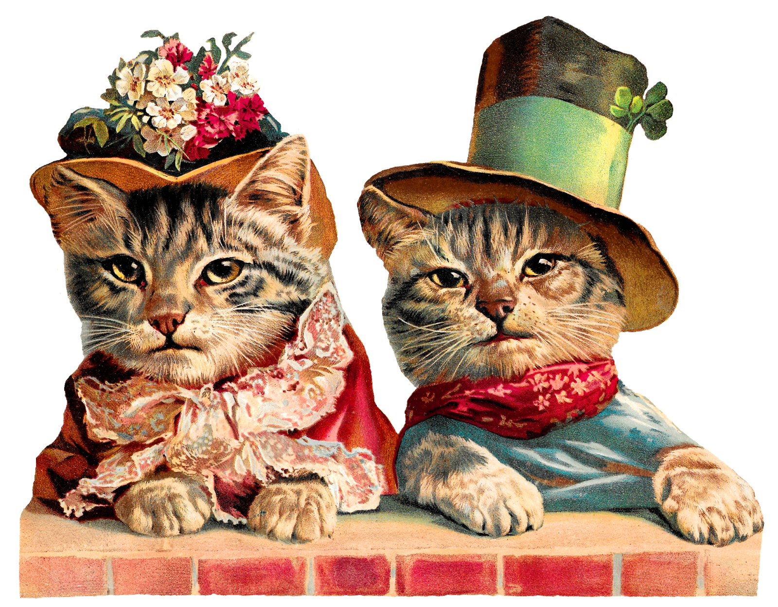 Kittens clipart male cat. Antique images victorian cats