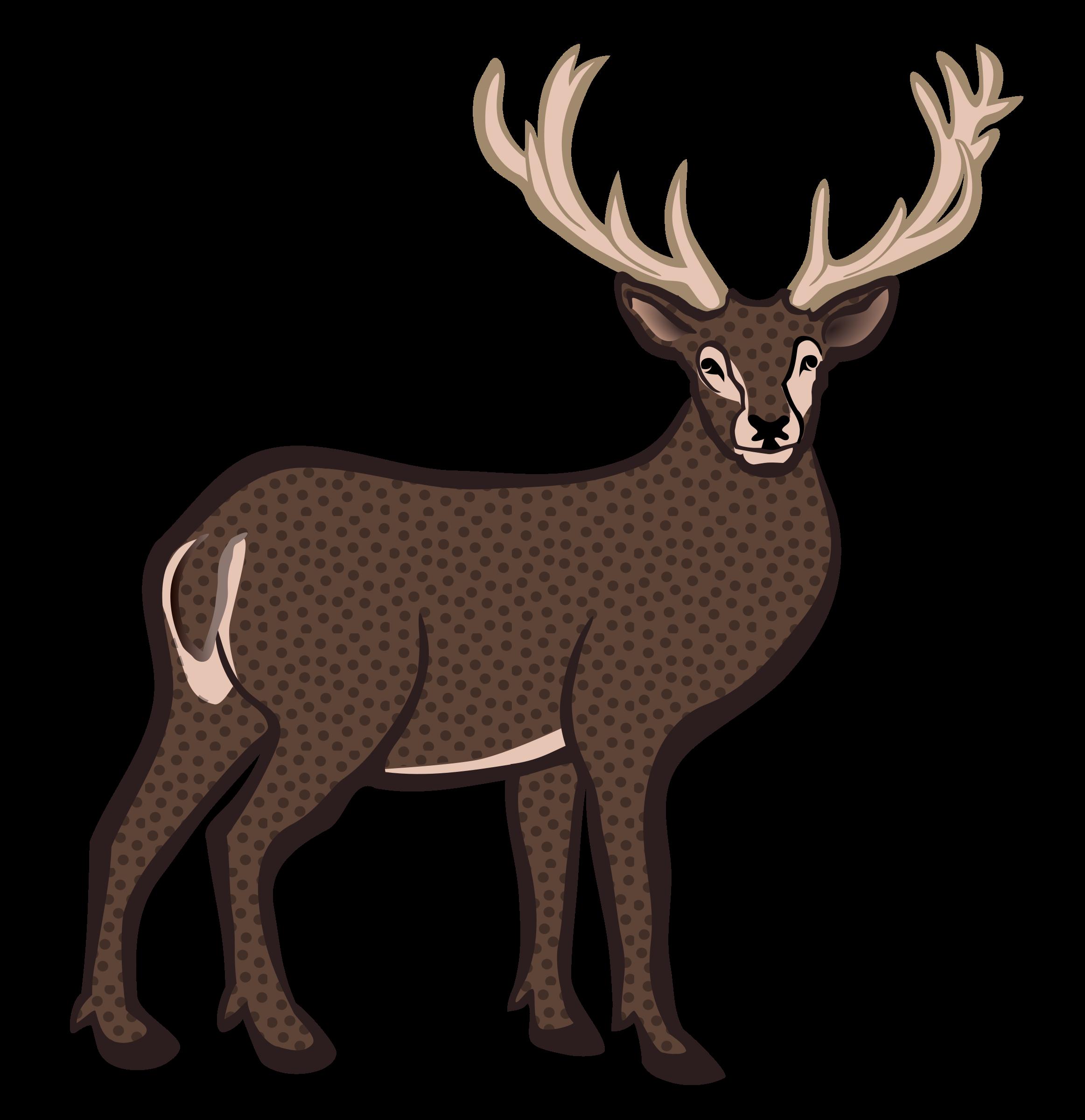 Deer clipart antler clipart. Coloured big image png