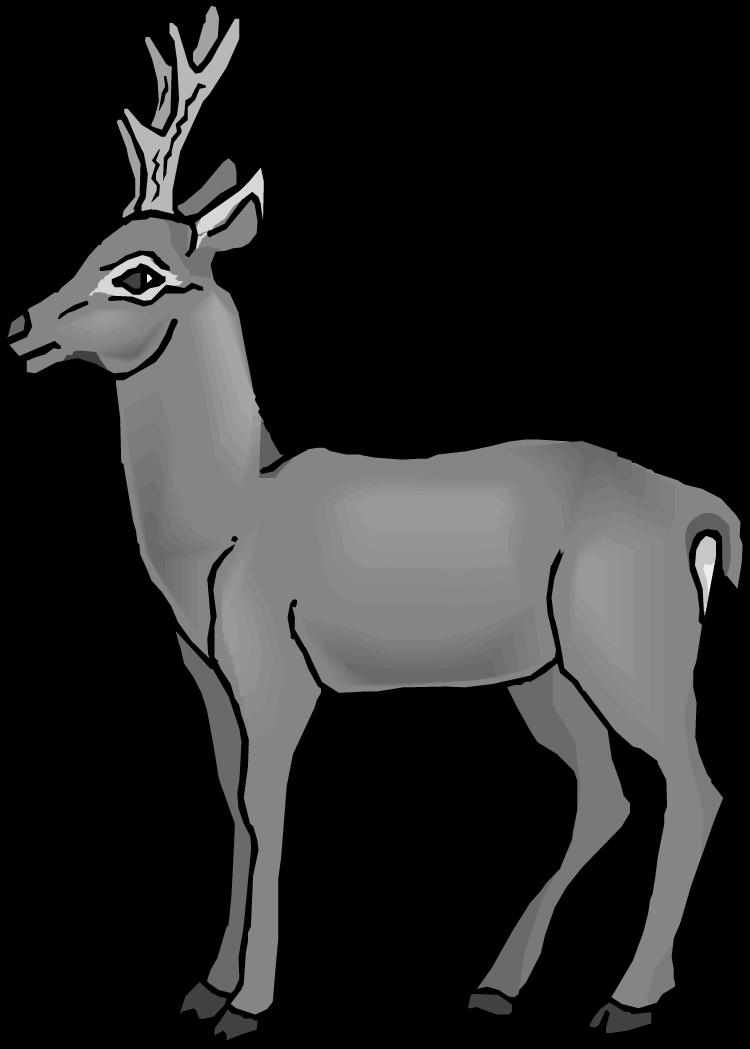 Deer clipart mule deer. Page of clipartblack com