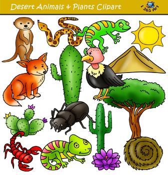 Set animals and elements. Desert clipart desert environment