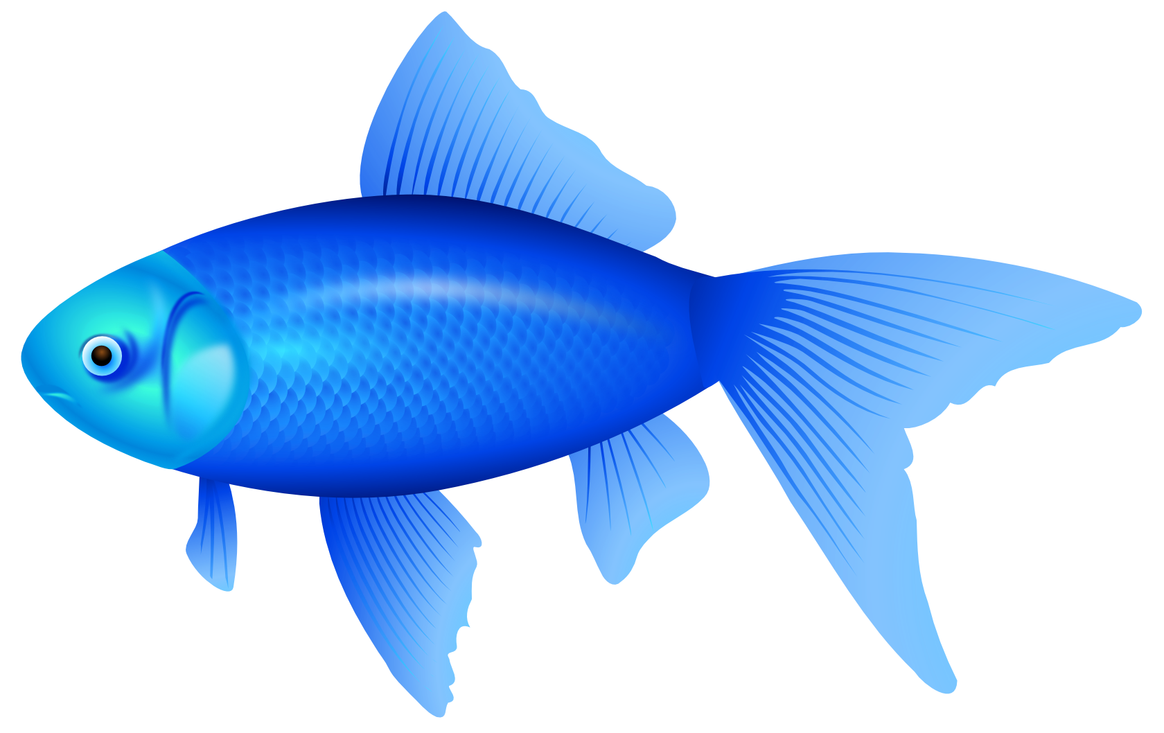 Fishing clipart fishing pond. Blue fish png image