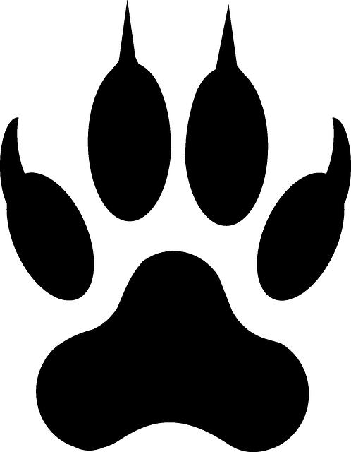 Footprints clipart footprint trail. Free image on pixabay