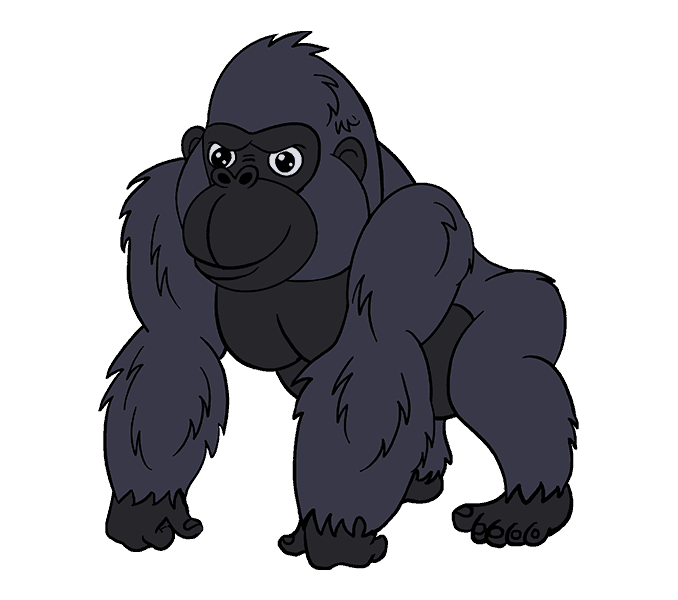 Cartoon drawing at getdrawings. Eye clipart gorilla