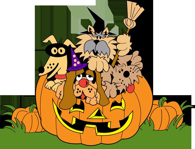 Animals halloween