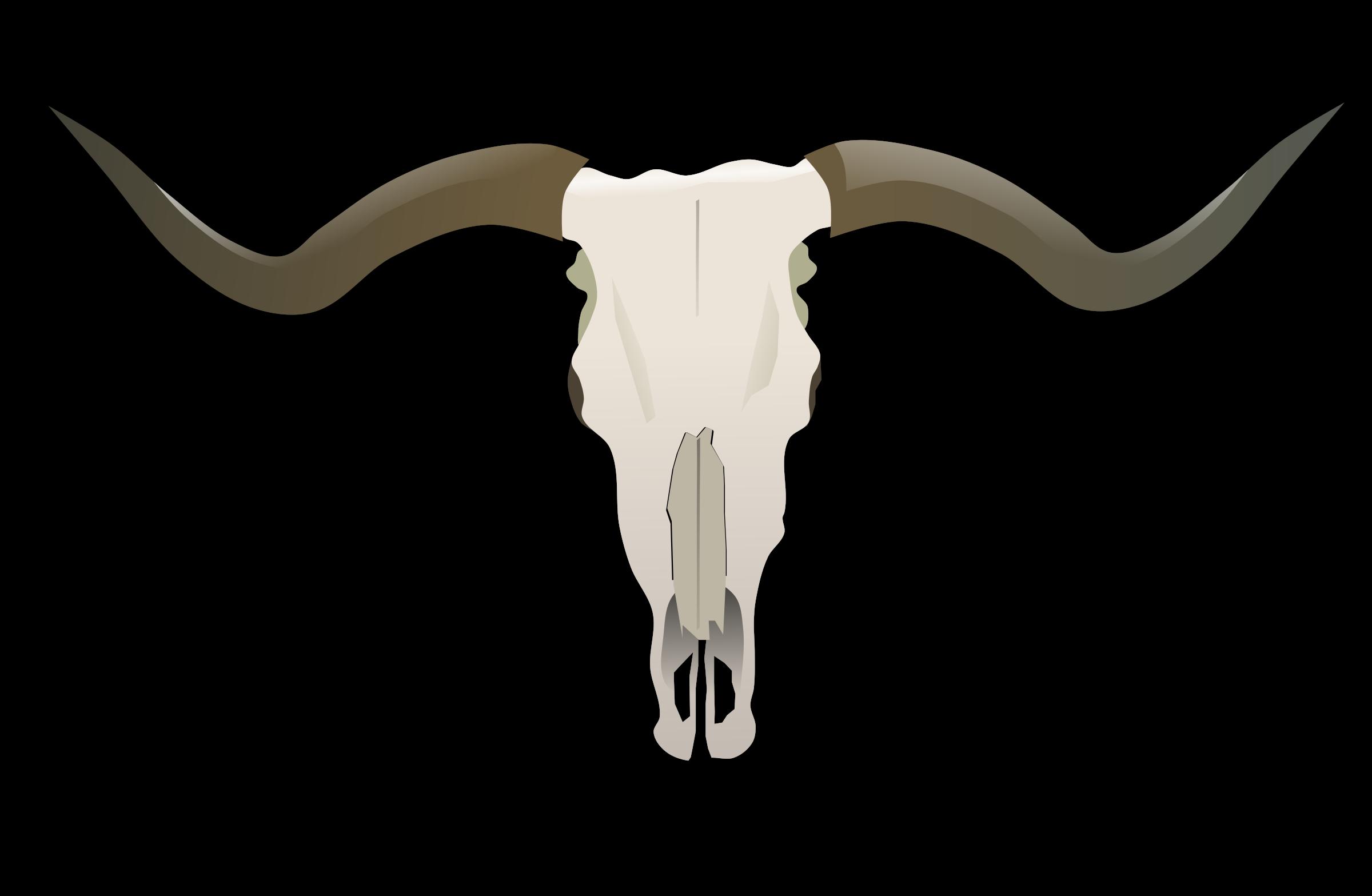 Skull big image png. Longhorn clipart emblem