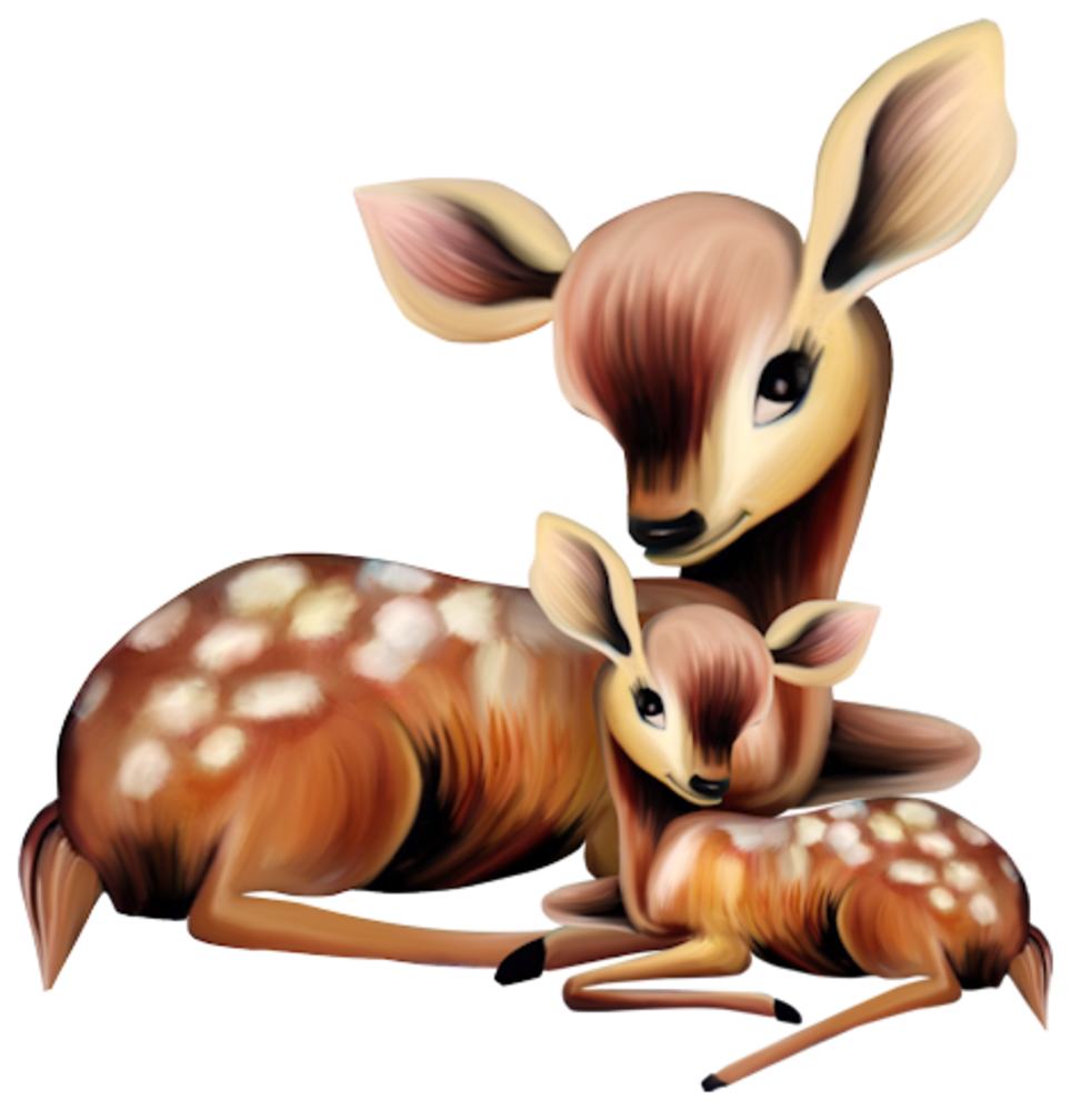 Hunting clipart sambar deer. Adorable mother and baby