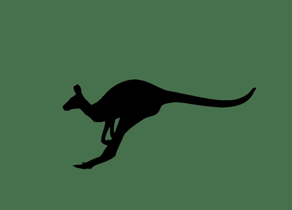 Kangaroo clipart kangaroo joey. Vector silhouette jumping rooweb