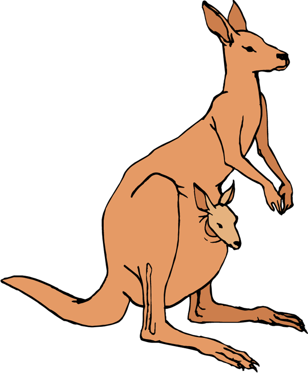 Clip art free images. Kangaroo clipart cute
