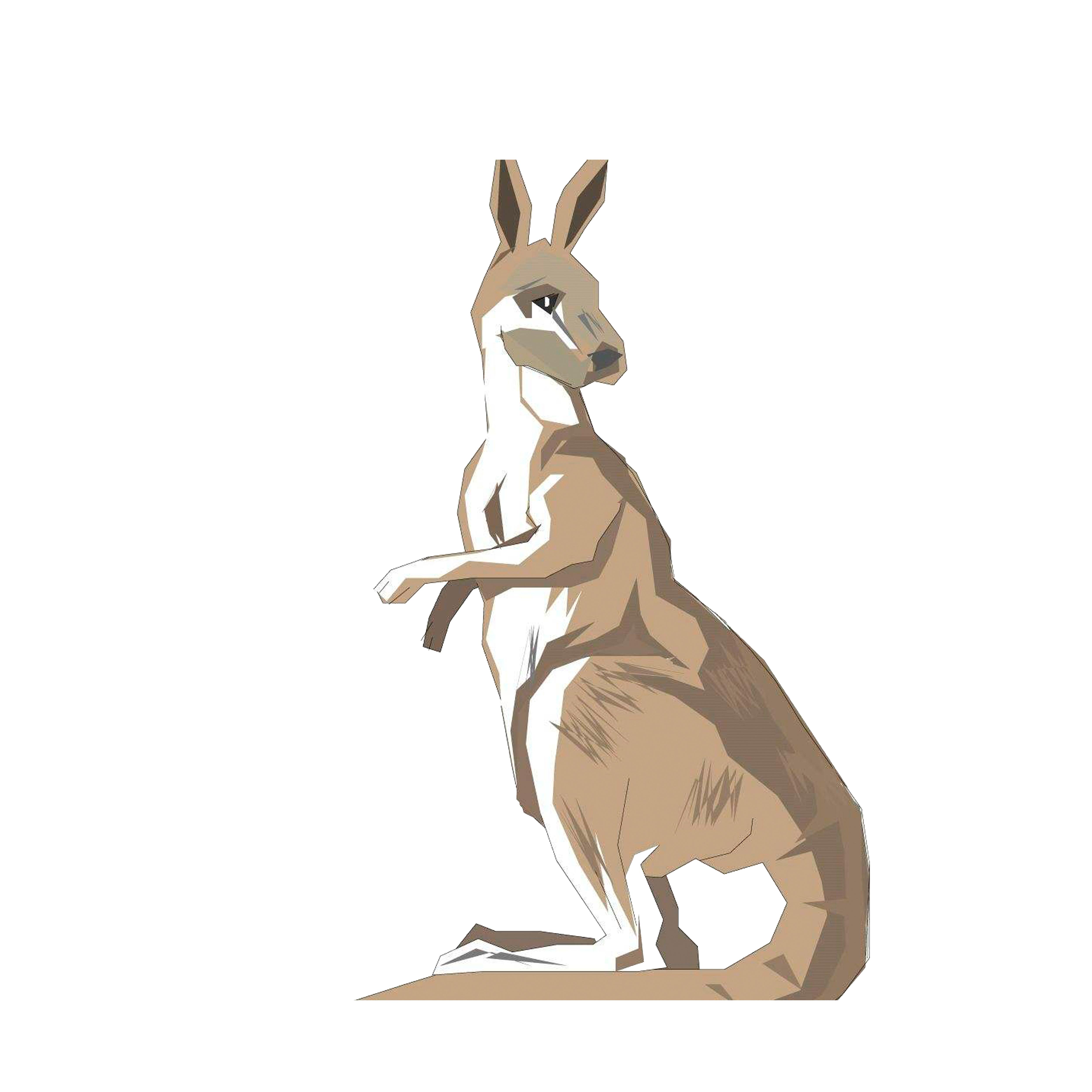 Australia drawing clip art. Kangaroo clipart animal australian