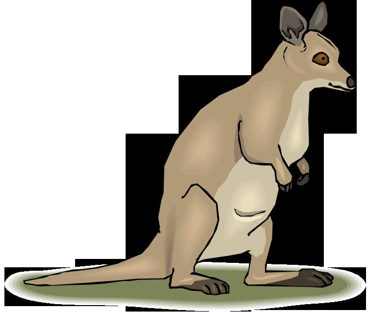 Free. Hops clipart kangaroo