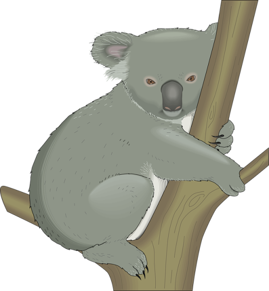 Clipart animals koala. Get started project gc