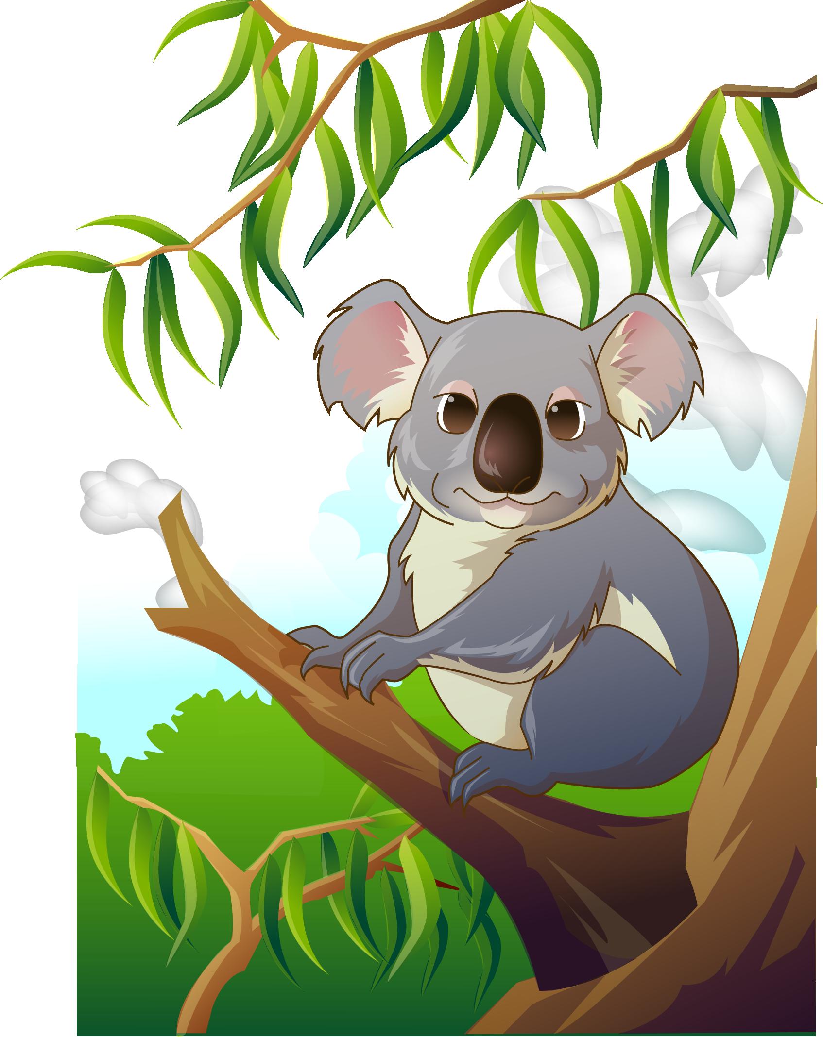 Clip art lovely transprent. Koala clipart koala australian