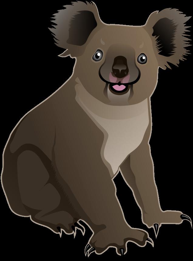 Clipart animals koala. Sitting k png html