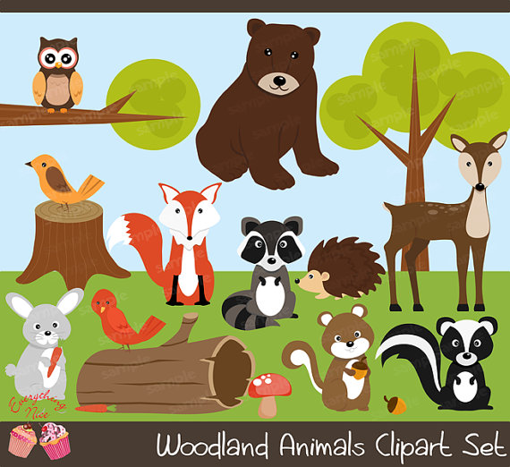 Woodland clipart woods animal. Wood land animals set