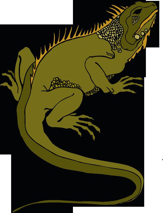 Pet lizard . Gecko clipart chipkali