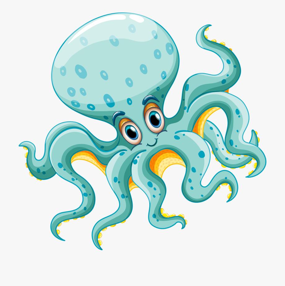Clipart octopus teal. Animals sea life clip
