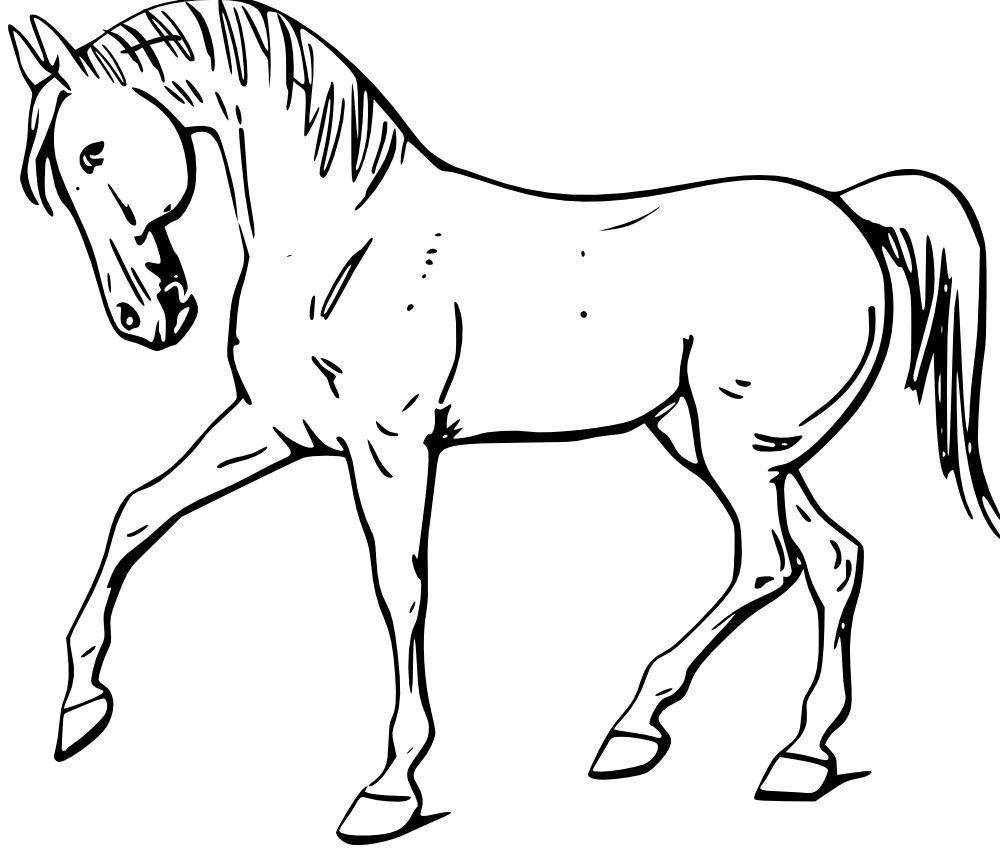 Funny clipart horse. Animals drawing outline at