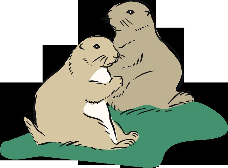 Free. Otter clipart prairie dog