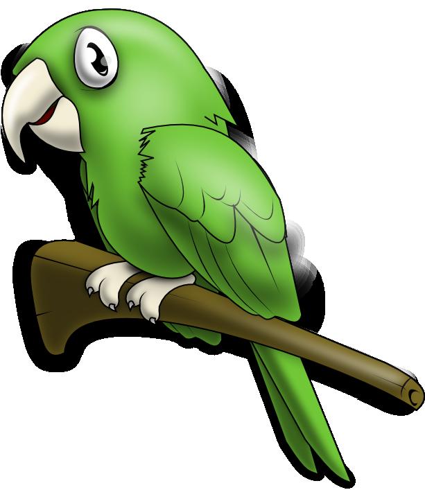 Parrot clipart bird's. Loro png iilustrations pinterest