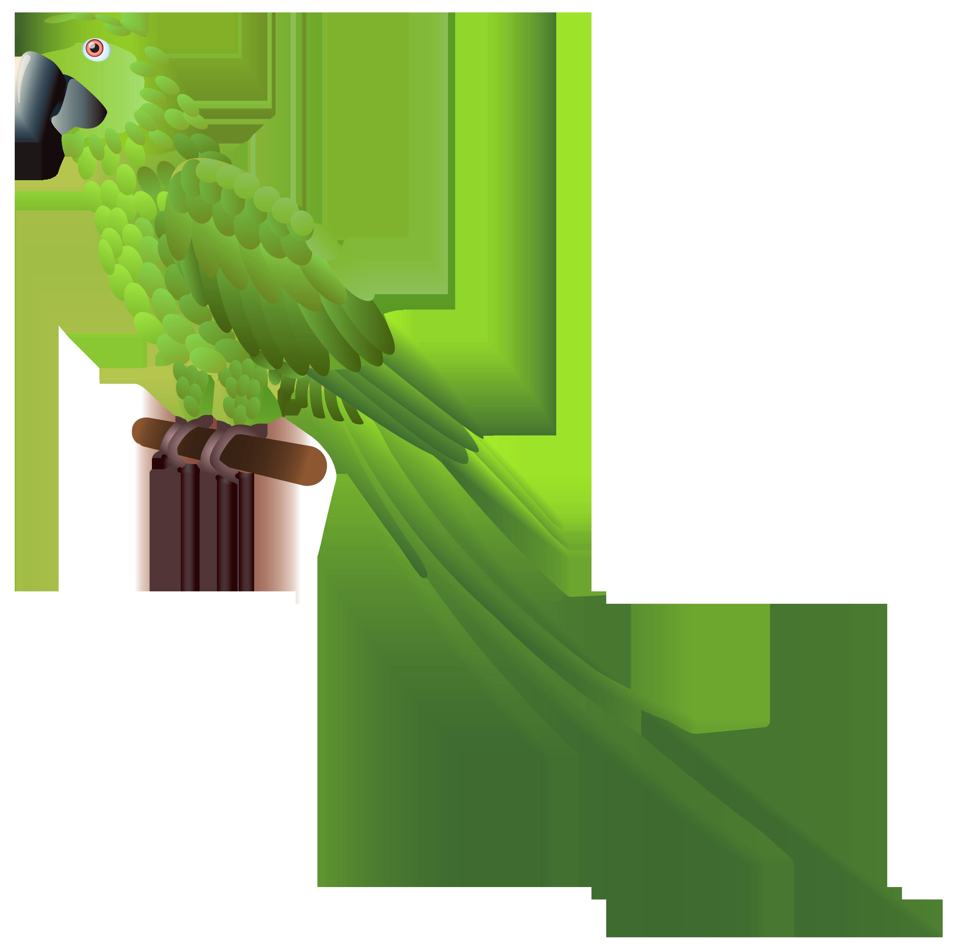 Parrot clipart beach. Green png best web
